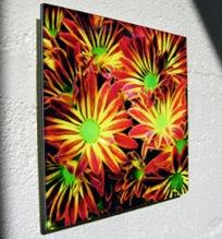 Acrylic300crop