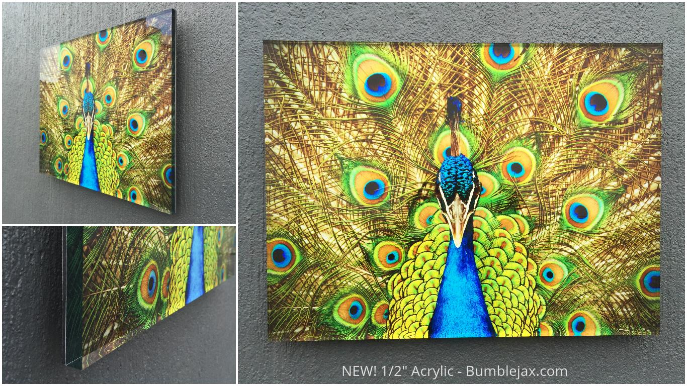 Acrylic Glass Photo Prints Bumblejax
