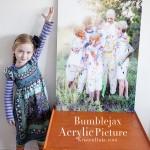 Bumblejax-Acrylic-Picture